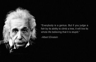 Albert Einstein's Self-Esteem picture quote